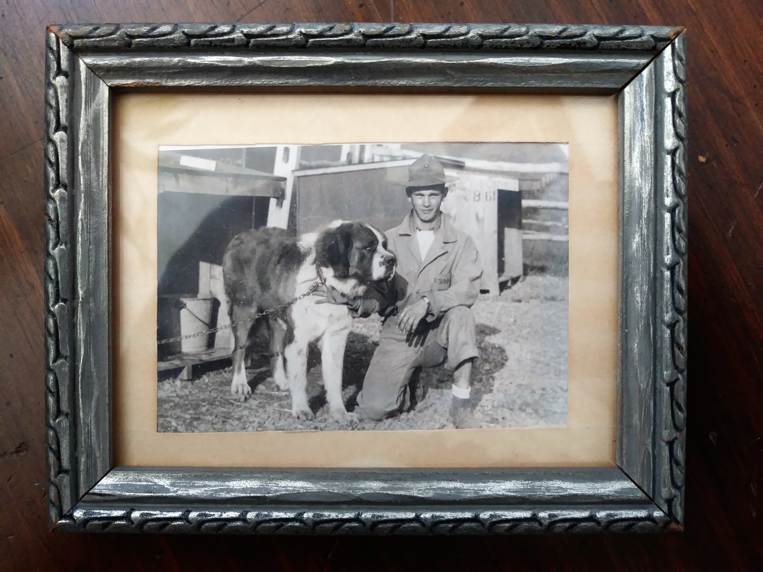 This framed photo shows Homer Finley at Front Royal, Virginia with an unnamed Saint Bernard.