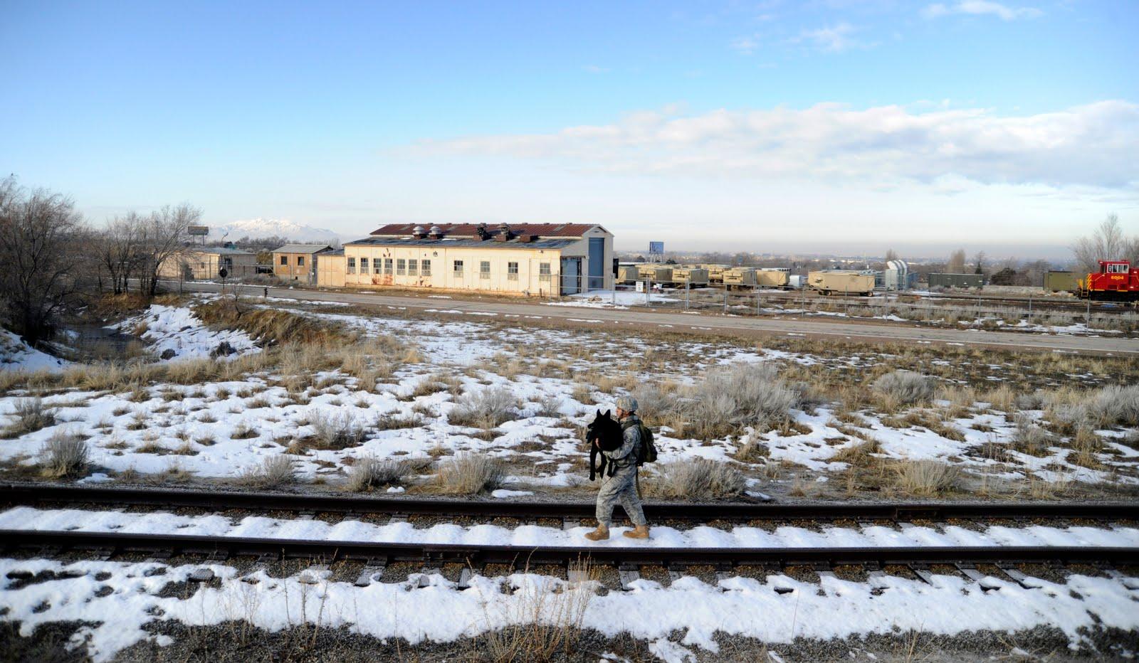 Staff Sgt. Erick Martinez, a military dog handler, carries Argo II March 4, 2011