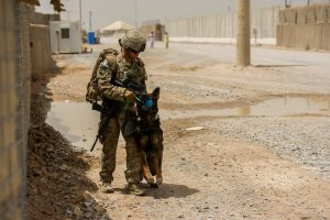 This is Air Force Staff Sgt. Jessie Johnson and her MWD Chrach (pronouced Crash).