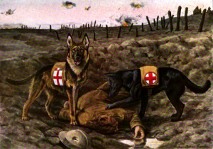 German Shepherd Dogs In The Military A Brief Historical Overview