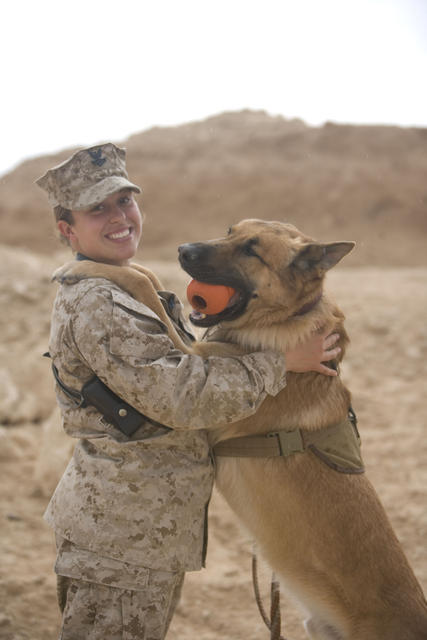 U.S. Navy Petty Officer 2nd Class Danielle Kubit, from Marine Corps Task Force Military Police, 1st Battalion, 12th Marine Regiment, rewards her working dog, Britt, after finding a simulated improvised explosive device during a training exercise at Al Asad Air Base, Iraq, Feb. 23, 2009. Marines and Sailors from Task Force Military Police conduct exercises to ensure working dogs remain trained and ready for operations while deployed. (U.S. Marine Corps photo by Lance Cpl. Chance M. Hiser/Released)