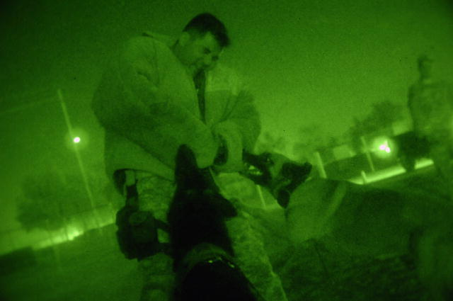 Timmy and Chay, military working dogs, strike as a team to take down U.S. Navy Petty Officer 1st Class Sergio Sandoval, during nighttime double dog aggression training June 18, 2008, Joint Base Balad, Iraq. Sandoval is assigned as a dog handler to the 332nd Expeditionary Security Forces Squadron, Detachment 1. (U.S. Air Force photo by Senior Airman Julianne Showalter/Released)