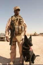 Marine and Navy Handlers