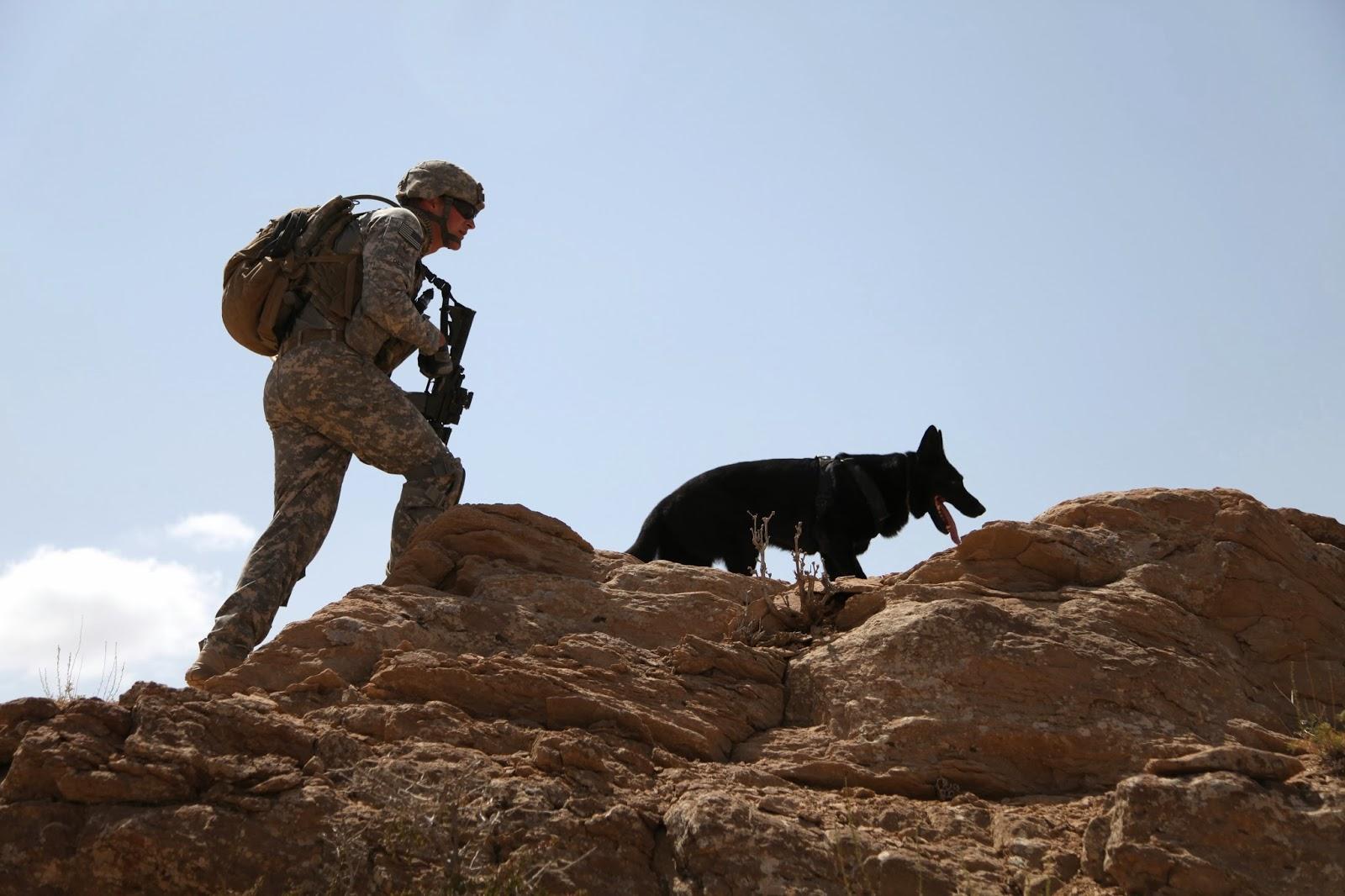 U.S. Army - Afghanistan