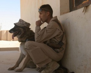 A U.S. Marine and military working dog Marty take a break as they conduct training for the Lioness Program at Camp Korean Village, Iraq, Nov. 30, 2006. The program uses female Marines to conduct security searches of women who may not be comfortable having amale search them. (U.S. Marine Corps photo by Sgt. Jennifer L. Jones) (Released)