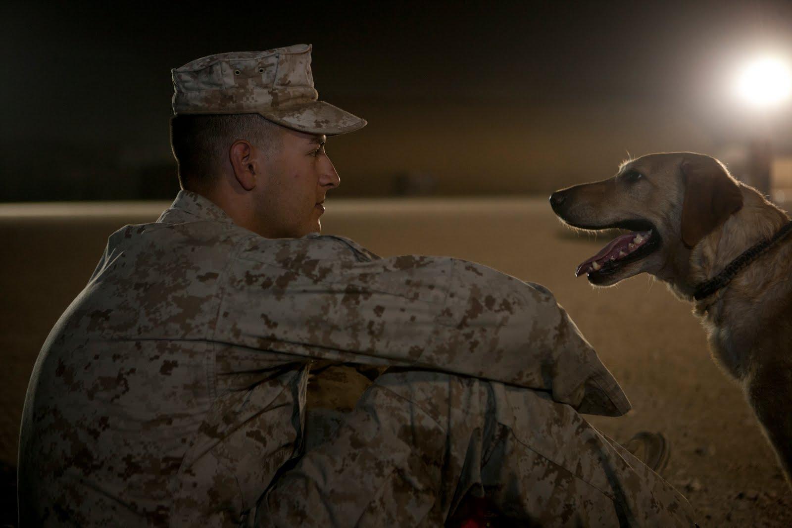 U.S. Marine Corps Lance Cpl. Jason J. Scribner and his military working dog, Streek