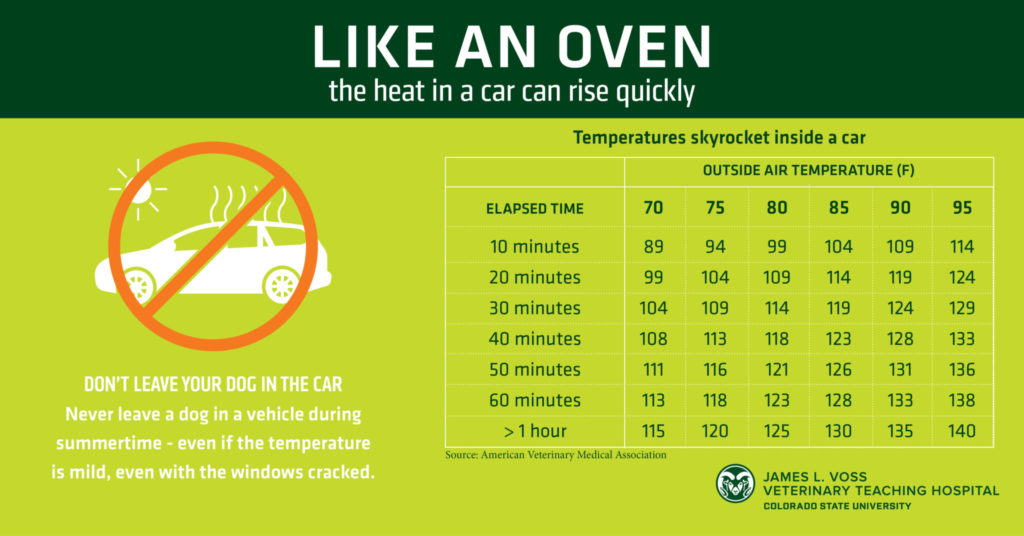 To emphasize the need to prevent dog heat stroke, this graphic demonstrates how quickly a car heats up inside at various outside temperatures.