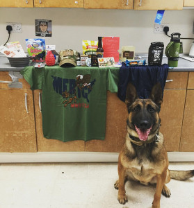 Care package contents line a kitchen counter. MWD sits on the floor in front of the counter staring intently at the camera.