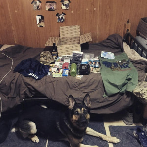 An MWD sits alert on the floor next to a handler's bed. On the bed, care package contents are carefully laid out in front of the box they arrived in.