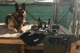 Photo of deployed military working dog next to care package contents from corporate sponsors.