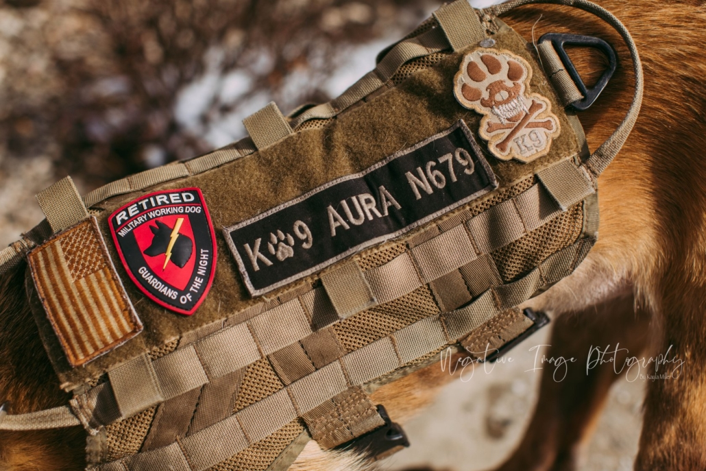 This photo shows RMWD Aura's military vest, which includes a Guardians of the Night patch.