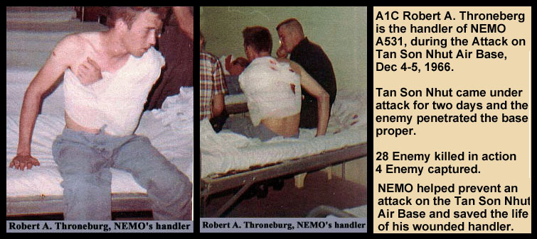 This graphic includes two 1966 photos of Bob Throneburg after the bandaging of his injury.