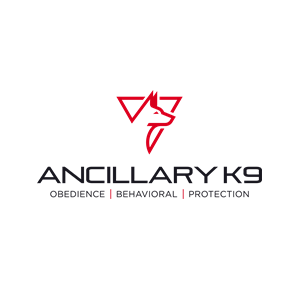 """This is the logo for Ancillary K9. The tagline reads, """"Obedience, Behavioral, Protection."""" The logo consists of inverted red triangle with a red line drawing of a Malinoi profile. Below this image is the company name and tagline in a black all caps font."""