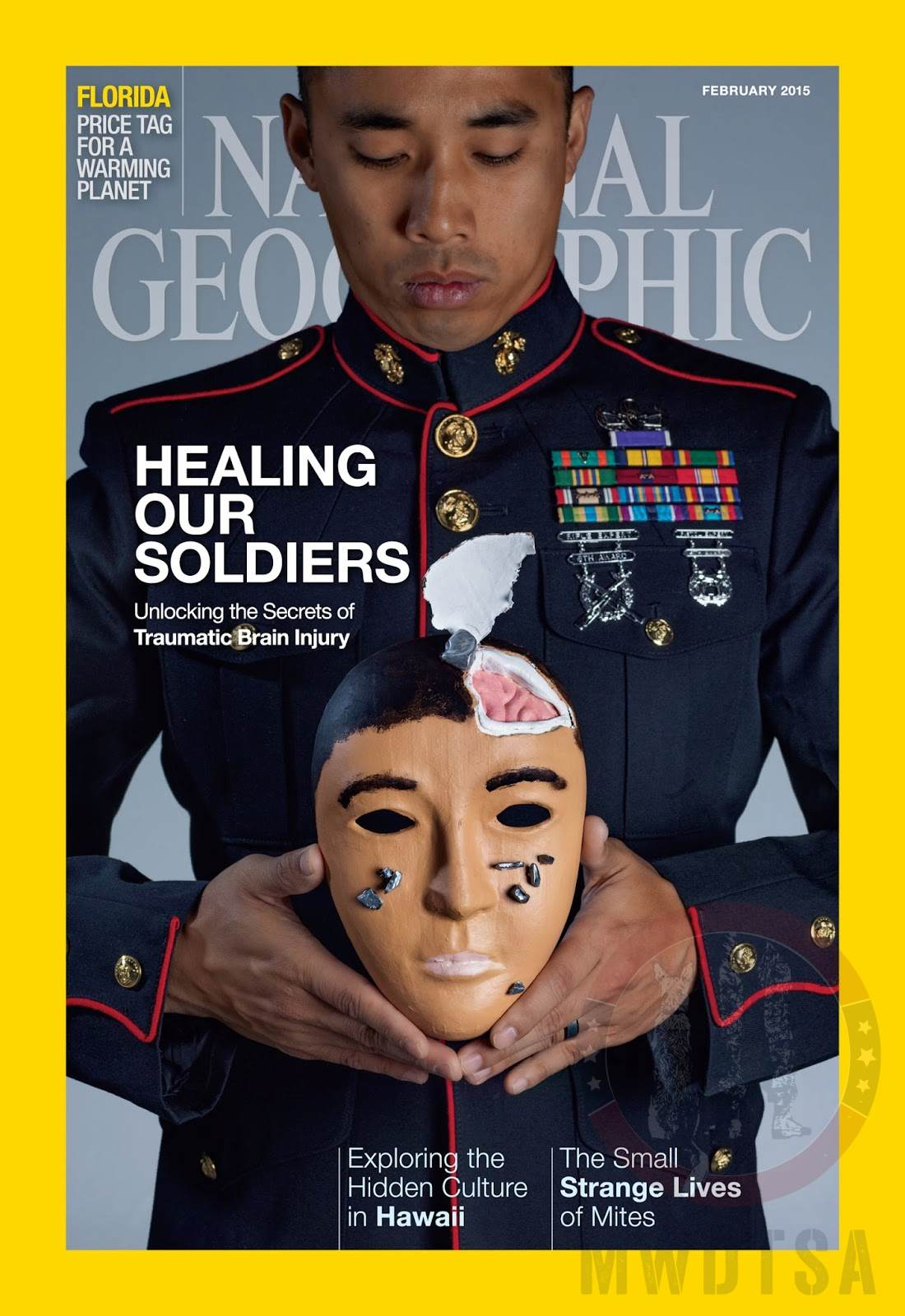 "February 2015 National Geographic cover ""Healing Our Soldiers"""