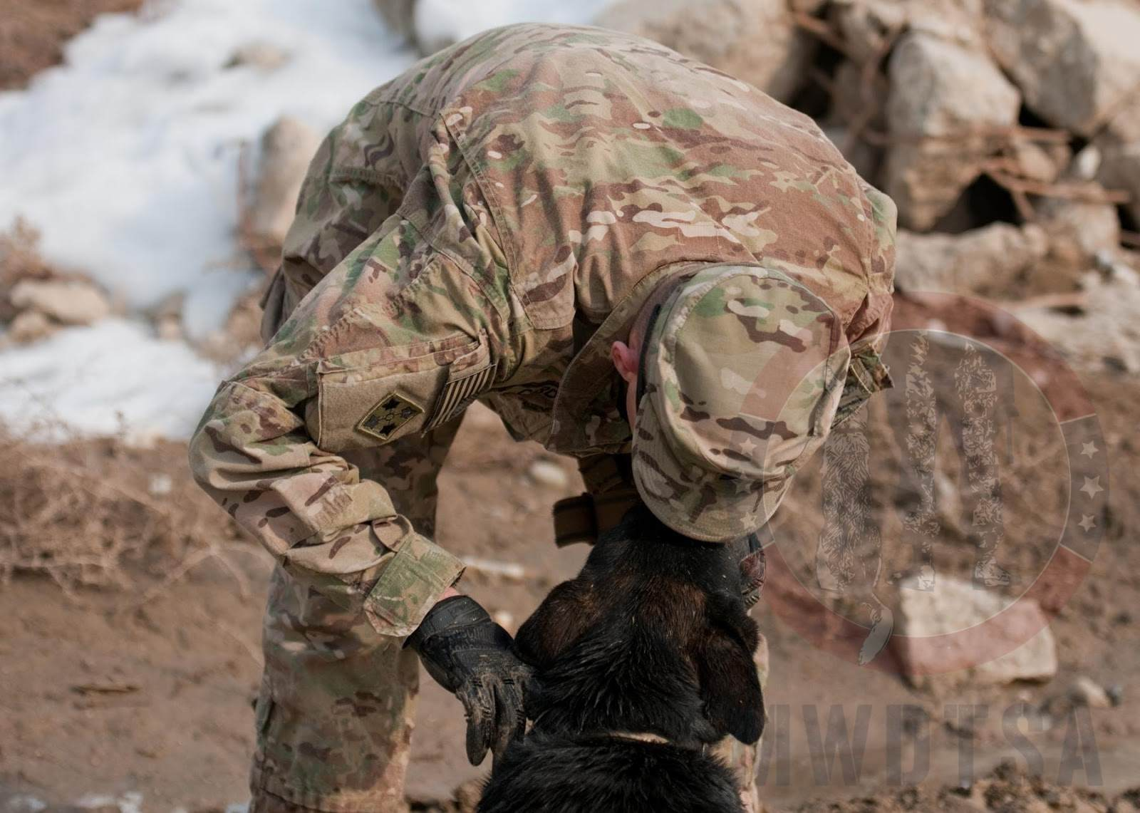 Sgt. Brian Curd, a dog handler, shows Staff Sgt. Allen, a mine-detection dog, some affection after a training session at Bagram Air Field, Afghanistan, Jan. 8, 2013.