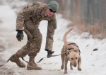 49th Engineer Detachment Dogs Deployed