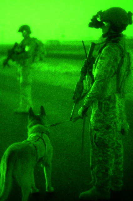 U.S. Soldiers and a military working dog provide command control during a security halt while conducting operations in the Multi-National Division (South-East) area of responsibility in Basra, Iraq, July 31, 2008. DoD photo by Pfc. Rhonda Roth-Cameron, U.S. Army. (Released)