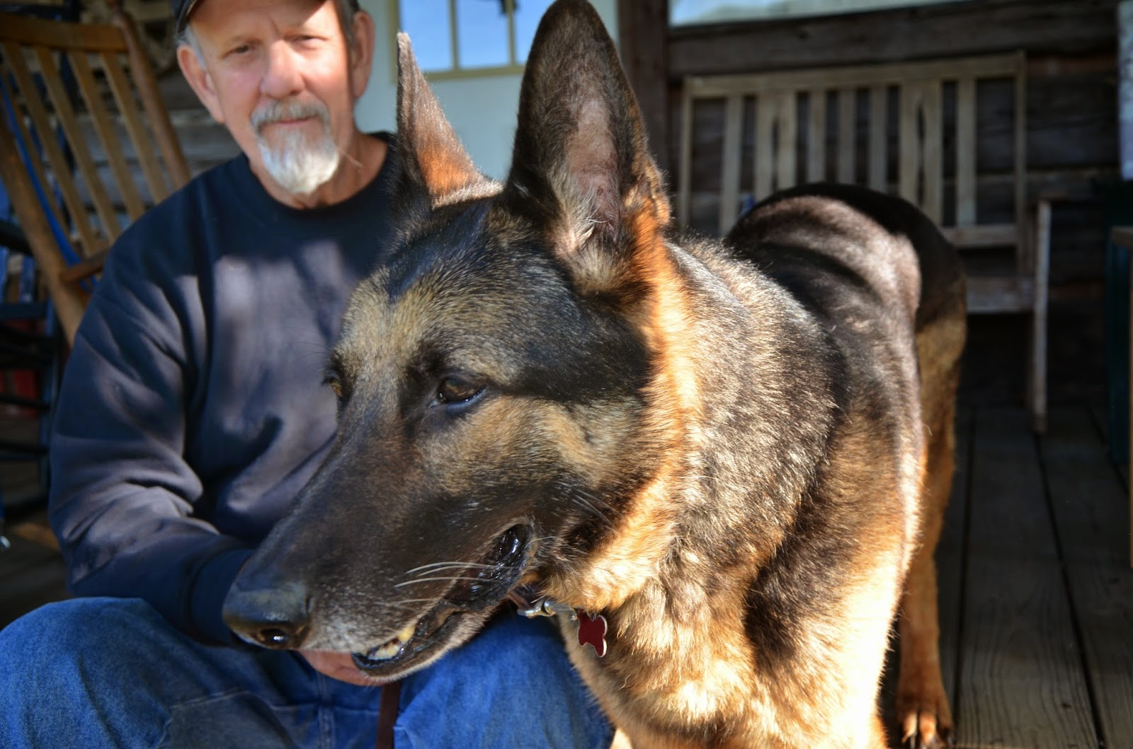 Vietnam Veteran and MWD handler Johnny Mayo with a military working dog